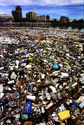 great_pacific_garbage_patch